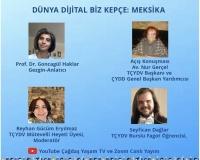 Digital Gezi - Meksika